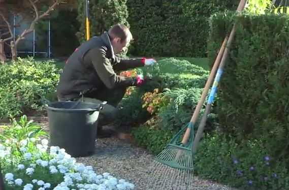 Empresas de jardineria en mallorca best com anuncios de for Empresas de jardineria